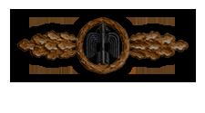 Frontflugspange für Jagdflieger in Bronze (Verleihung nach 20 Frontflügen)
