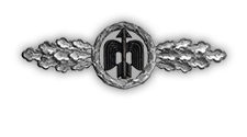 Frontflugspange für Jagdflieger in Silber (Verleihung nach 60 Frontflügen)