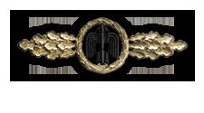 Frontflugspange für Jagdflieger in Gold (Verleihung nach 110 Frontflügen)