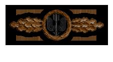 Frontflugspange für Zerstörer in Bronze (Verleihung nach 20 Frontflügen)