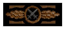 Frontflugspange für Schlachtflieger in Bronze (Verleihung nach 20 Frontflügen)