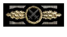 Frontflugspange für Schlachtflieger in Gold (Verleihung nach 110 Frontflügen)