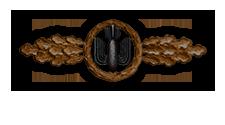 Frontflugspange für Kampfflieger in Bronze (Verleihung nach 20 Frontflügen)