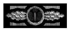 Frontflugspange für Kampfflieger in Silber (Verleihung nach 60 Frontflügen)