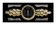 Frontflugspange für Kampfflieger in Gold (Verleihung nach 110 Frontflügen)
