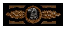 Frontflugspange für Aufklärer in Bronze (Verleihung nach 20 Frontflügen)
