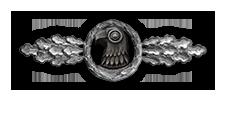 Frontflugspange für Aufklärer in Silber (Verleihung nach 60 Frontflügen)