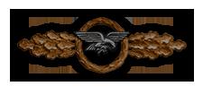 Frontflugspange für Transportflieger in Bronze (Verleihung nach 20 Frontflügen)