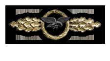 Frontflugspange für Transportflieger in Gold (Verleihung nach 110 Frontflügen)