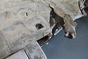 Schnellverschlussöffnung auf der rechten Tragflächenoberseite