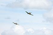 Zwei Hispano Aviación HA-1112 Buchon (Bf 109)