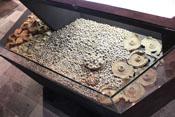 Zahllose im Ackerboden gefundene Schrapnelle von Artilleriegranaten des 1. Weltkrieges