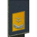 Kragenspiegel: Oberleutnant