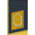 Kragenspiegel: Generalmajor