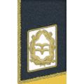 Kragenspiegel: Generalleutnant